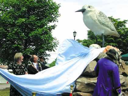 Unveiling of the world's largest sandpiper